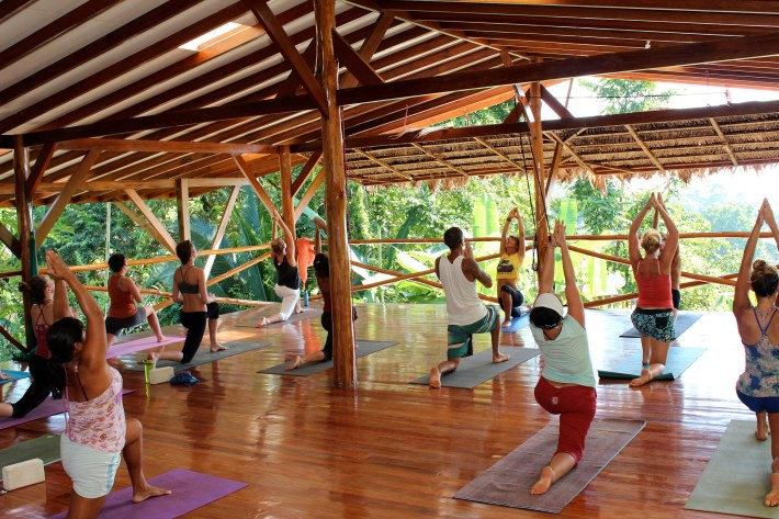 Yoga Trade in action
